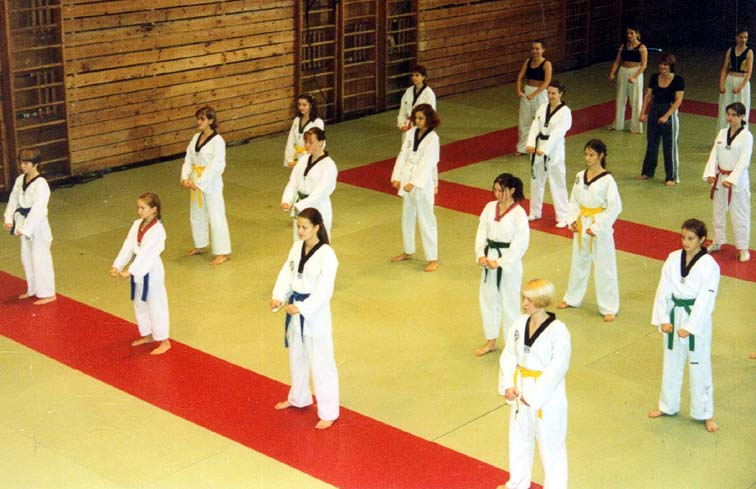 tae kwon do black belt essay Tae kwon do essay 8/11/2012 email: scotjane@alpinecmnet when i tell people that i study tae kwon do, often someone will ask if i have ever had the use what i know.